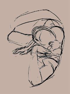Kobieta szkic